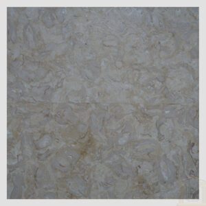 Brushed Antique Shells Reef Beige Limestone tiles