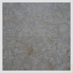 Brushed Antique Shells Reef Beige Limestone tiles
